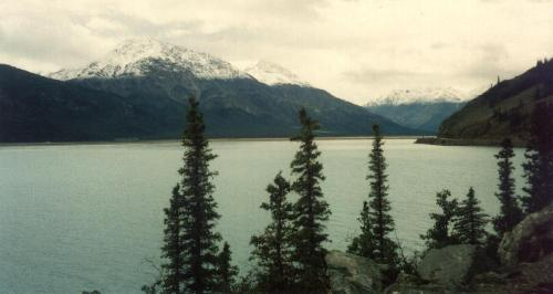 Der Kluane Lake